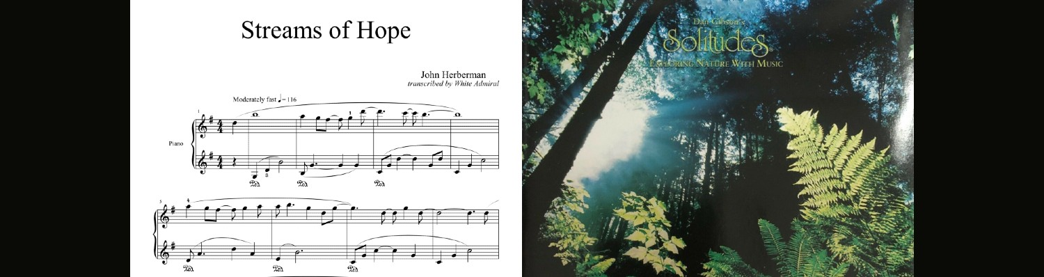 Dan Gibson Solitudes (Streams of Hope)
